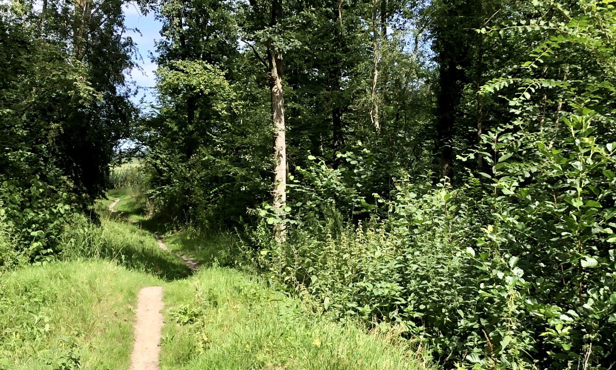 MTB route Lelystad